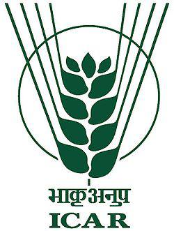 Central Rice Research Institute Recruitment 2016 – Senior Research Fellow Vacancy – Walk In Interview 02 August – Cuttack, Odisha
