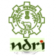 NDRI Recruitment