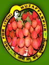 National Research Centre on Litchi