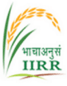 Indian Institute of Rice Research