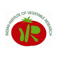 Indian Institute of Vegetable Research (IIVR)