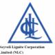 Neyveli Lignite Corporation Limited (NLC)